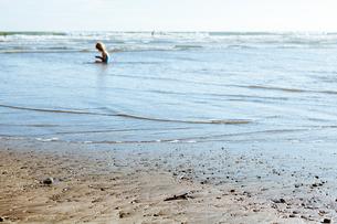 海岸の少女 FYI00430634