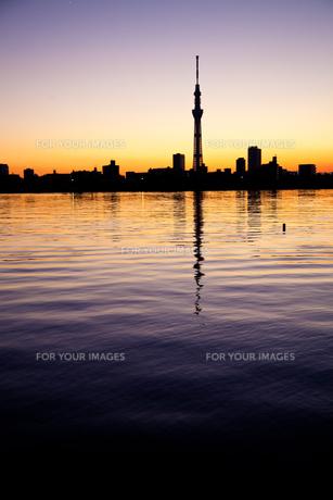 夕暮れの東京 FYI00430637