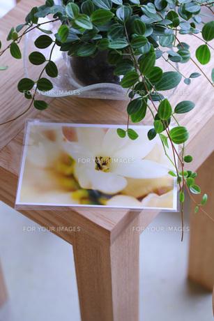 昼下がりのカフェ FYI00436190