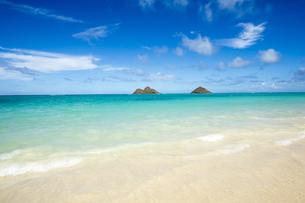 ラニカイビーチ、オアフ島、ハワイ-2 FYI00443703