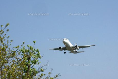 着陸体勢の飛行機 FYI00447854