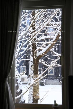 窓が名画と FYI00449239