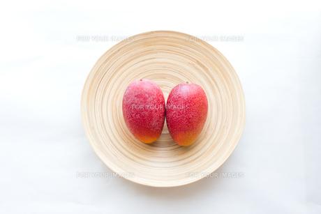 mango FYI00451418