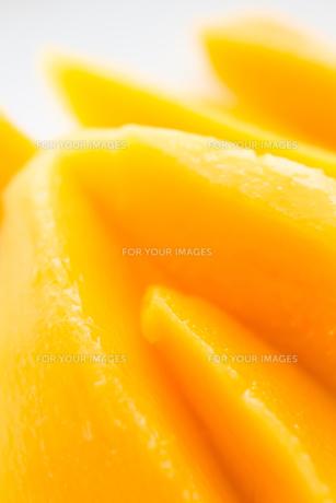 mango FYI00451449