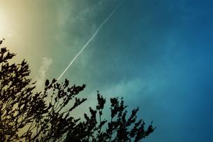 ひこうき雲 FYI00456514
