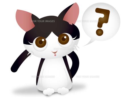 首をかしげる猫 FYI00457196