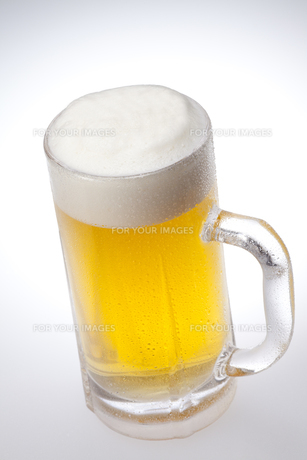 生ビール FYI00460316