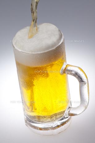 生ビール FYI00460328
