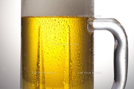 生ビール FYI00460330