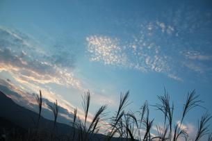 秋の空 FYI00461698