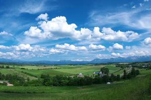 美瑛の丘と雲 FYI00464353