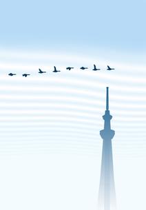 秋空を飛ぶ渡り鳥とスカイツリー FYI00466255