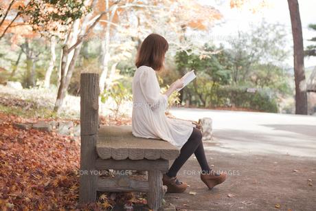 秋の紅葉した公園のベンチで読書をする女性 FYI00467223