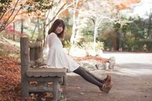 秋の紅葉した公園のベンチで座っている女性 FYI00467225