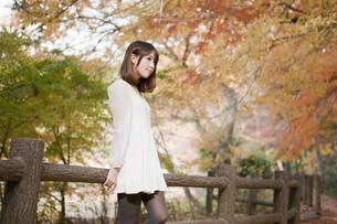 秋の紅葉した公園で立っているバッグを持った女性 FYI00467254