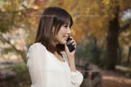 秋の紅葉した公園で立って携帯電話を掛けている女性 FYI00467256