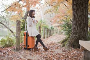 秋の紅葉した公園でトランクに座って本を読む女性 FYI00467272