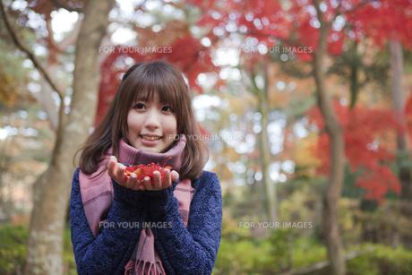 秋の紅葉の公園で落ち葉を手のひらに乗せる笑顔の女性 FYI00467366