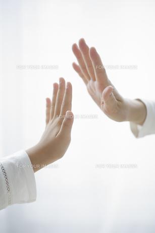 子どもの手と大人の手 FYI00468994