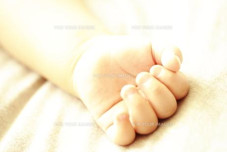 赤ちゃんの手 FYI00469719
