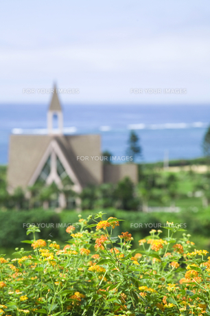 花と教会と海 FYI00470272
