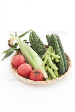 ザルに盛られたトマトとトウモロコシとゴーヤと枝豆とキュウリ FYI00470405