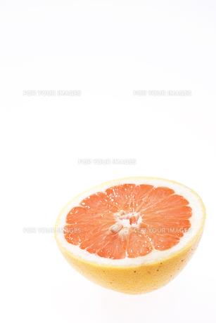グレープフルーツ FYI00470415
