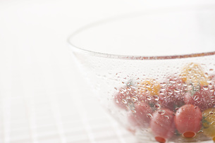 水滴のついたミニトマト入りガラス器 FYI00470486