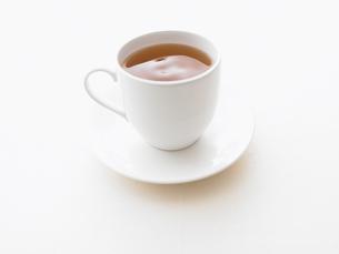 紅茶 FYI00470579
