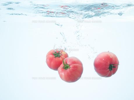 水の中のトマト FYI00470621