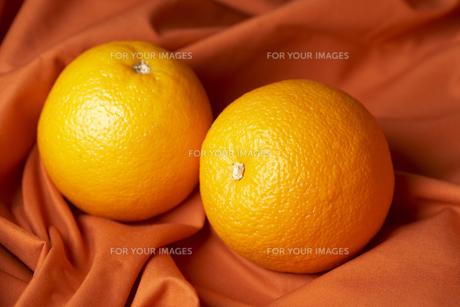 布の上に置いたオレンジ FYI00470739