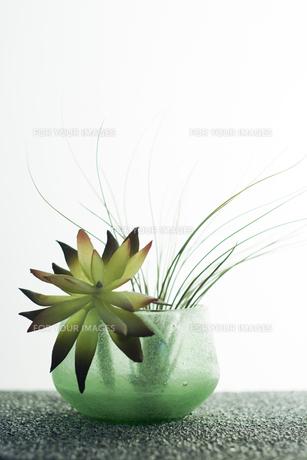 ガラスの器に活けた花 FYI00471056