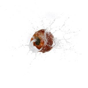 水に飛び込むトマト FYI00471168
