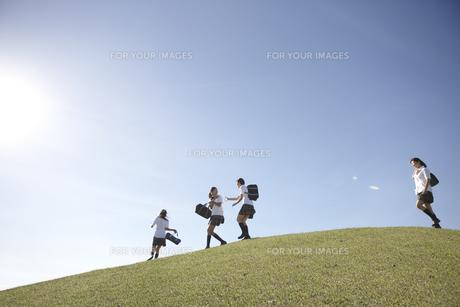 青空の下の芝の高台でふざけ合う女子高生四人 FYI00471332