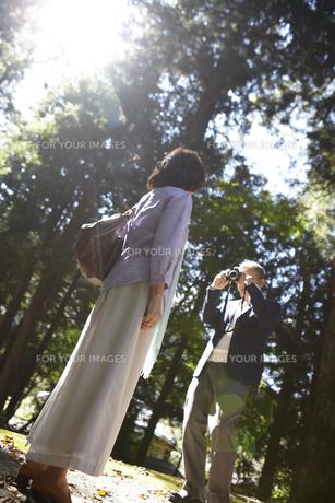 大木の前で妻の写真を撮るシニア男性 FYI00471337