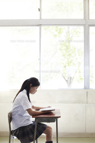 教室の窓際の席で読書している女子高生 Fyi00471639 気軽に使える