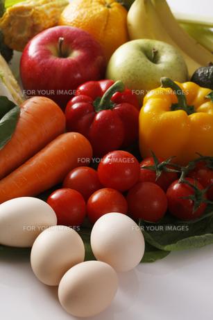 色々な食材 FYI00475123