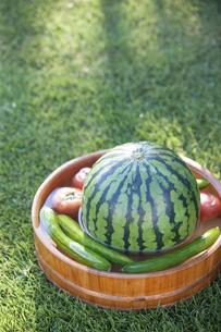 桶で冷やすスイカと野菜 FYI00476146