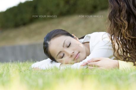 芝生に寝転ぶ女性 FYI00476583