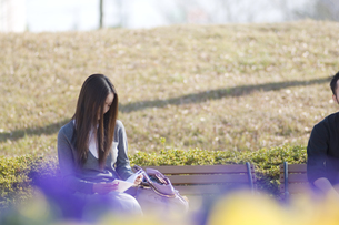 ベンチに座る女性 FYI00476618