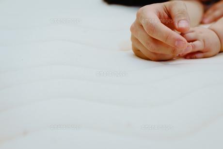 握られた親子の手 FYI00481487