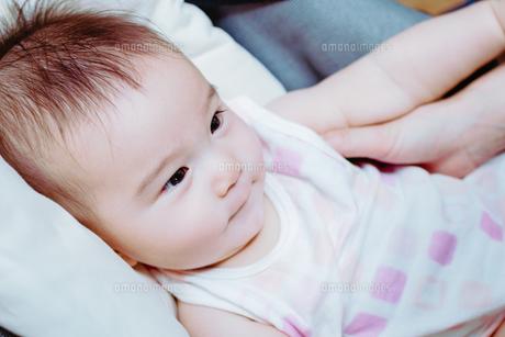 おだやかな赤ちゃん FYI00481492