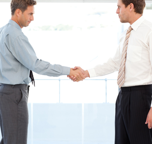 Two partners concluding a deal by shaking hands FYI00483407