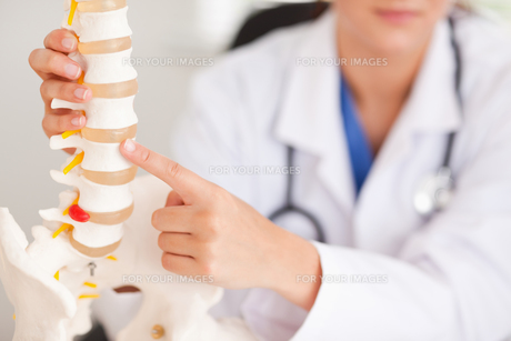 Doctor pointing at bone in spine FYI00484601