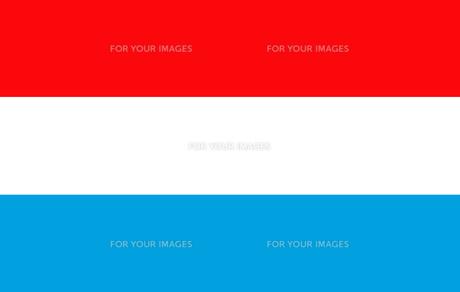 Netherlands flag FYI00486583