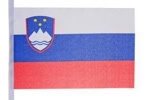 Slovenian flag FYI00487679