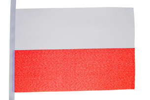 Polish flag FYI00487833