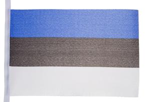 Estonian flag FYI00487934