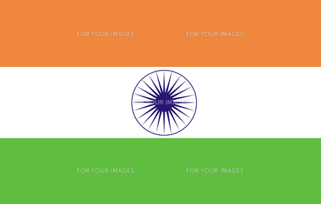 Indian Flag FYI00488186
