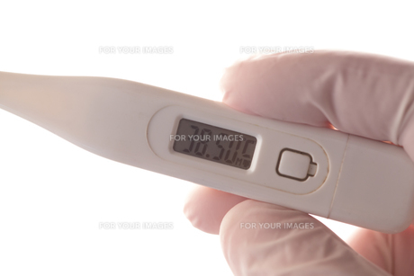 Gloved hand holding thermometerの素材 [FYI00488426]